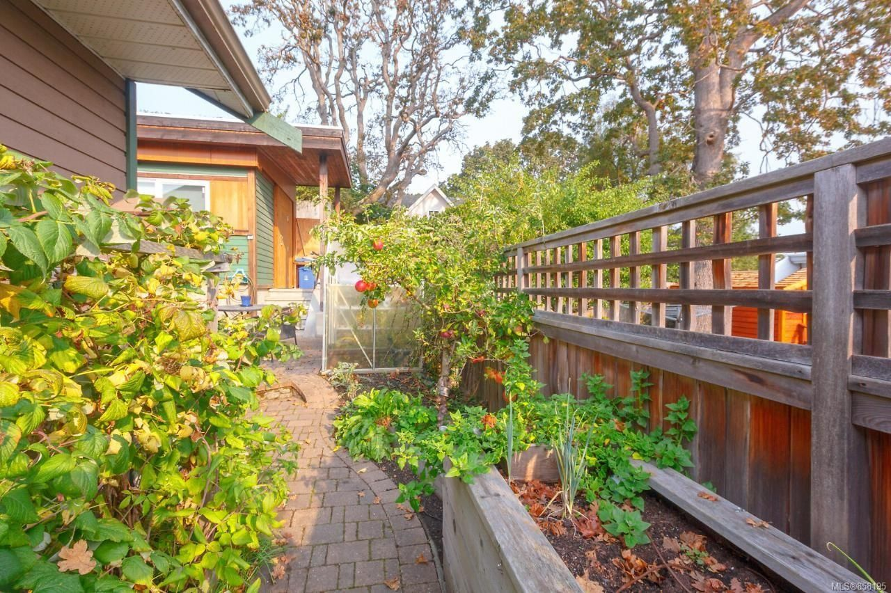 Photo 38: Photos: 1542 Westall Ave in : Vi Oaklands House for sale (Victoria)  : MLS®# 858195