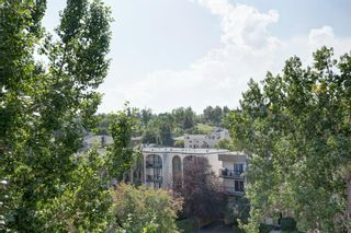 Photo 22: 402 2308 17B Street SW in Calgary: Bankview Apartment for sale : MLS®# A1144365