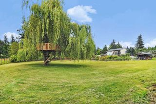 Photo 23: 24327 46A Avenue in Langley: Salmon River House for sale : MLS®# R2474008