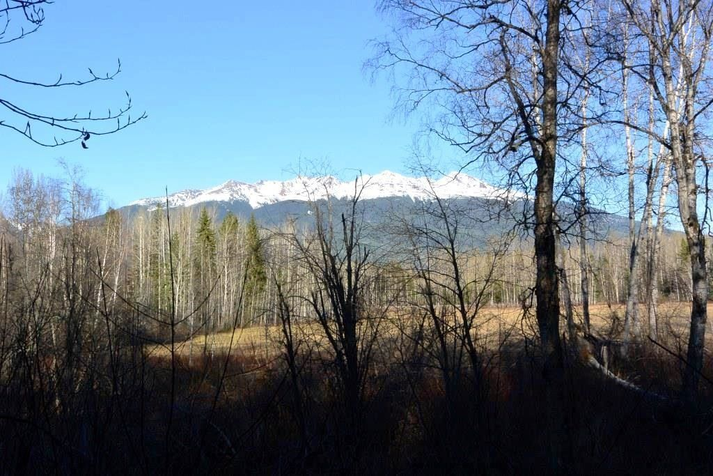 Main Photo: LOT A KLOECKNER Road in Smithers: Smithers - Rural Land for sale (Smithers And Area (Zone 54))  : MLS®# R2598861