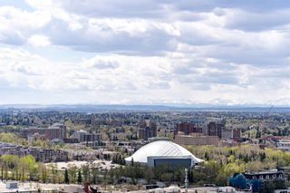 Photo 38: 3005 433 11 Avenue SE in Calgary: Beltline Apartment for sale : MLS®# A1106786