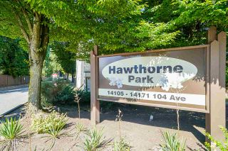 """Photo 1: 37 14111 104 Avenue in Surrey: Whalley Townhouse for sale in """"HAWTHORNE PARK"""" (North Surrey)  : MLS®# R2488903"""