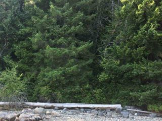 Photo 17: 6051 KINGFISHER Avenue in Sechelt: Sechelt District Land for sale (Sunshine Coast)  : MLS®# R2561268