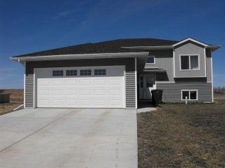 Photo 24: 5102 60 Avenue: Elk Point House for sale : MLS®# E4197855