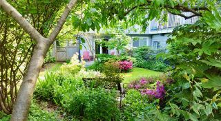 Photo 2: 606 W 23RD Street in North Vancouver: Hamilton House for sale : MLS®# R2138339