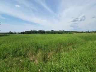 Photo 5: RR 222 TWP 504 LOT 1: Rural Leduc County Rural Land/Vacant Lot for sale : MLS®# E4254469