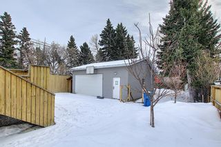 Photo 43: 429 1 Avenue NE: Airdrie Detached for sale : MLS®# A1071965