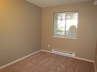 """Photo 8: #106 2960 TRETHEWEY ST in ABBOTSFORD: Abbotsford West Condo for rent in """"CASCADE GREEN"""" (Abbotsford)"""