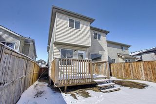 Photo 41: 161 Covebrook Place NE in Calgary: Coventry Hills Detached for sale : MLS®# A1097118