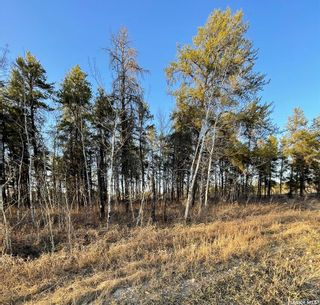 Photo 4: Over 1 acre lots in Hudson Bay: Lot/Land for sale : MLS®# SK850473