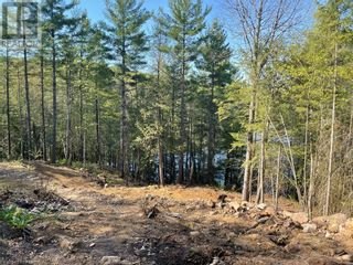 Photo 24: 1372 LAKE LORRAINE Road in Tory Hill: Vacant Land for sale : MLS®# 40052884