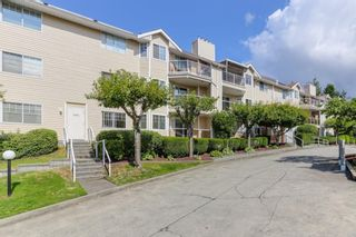 """Photo 3: 126 22611 116 Avenue in Maple Ridge: East Central Condo for sale in """"Rosewood Court Fraserview Village"""" : MLS®# R2388587"""