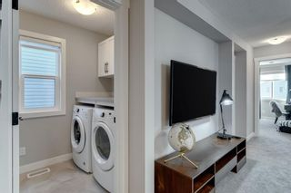 Photo 24: 361 Chinook Gate Close: Airdrie Detached for sale : MLS®# A1052473