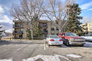 Photo 28: 305 40 Glenbrook Crescent: Cochrane Apartment for sale : MLS®# A1052145