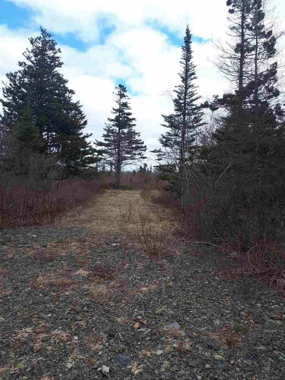 Main Photo: 252 Whitehead Road in Harrietsfield: 9-Harrietsfield, Sambr And Halibut Bay Vacant Land for sale (Halifax-Dartmouth)  : MLS®# 202025766