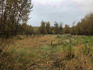 Photo 5: JOHNSTON ROAD in South Peace: Fort St. John - South Peace Land for sale (Fort St. John (Zone 60))  : MLS®# R2308370