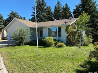 Photo 3: 4 Olds Place in Davidson: Residential for sale : MLS®# SK870481