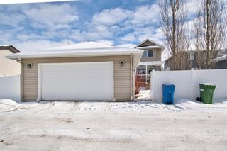 Photo 41: 202 Williamstown Close NW: Airdrie Detached for sale : MLS®# A1070134