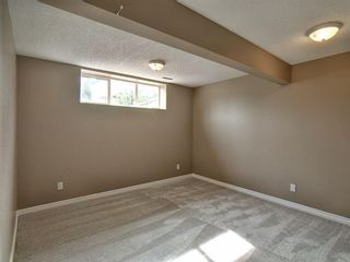 Photo 20: 305 Bayside Place SW: Airdrie Detached for sale : MLS®# A1116379
