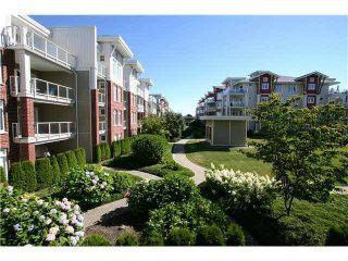 Photo 2: 225 4280 MONCTON STREET: Steveston South Home for sale ()  : MLS®# R2004380