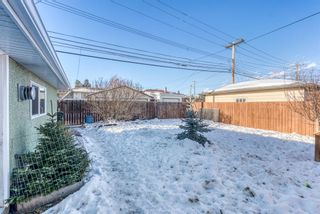 Photo 34: 77 Kentish Drive SW in Calgary: Kingsland Detached for sale : MLS®# A1059920