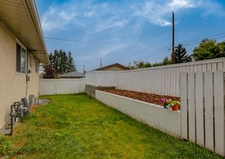 Photo 23: 3135 Rae Crescent SE in Calgary: Albert Park/Radisson Heights Detached for sale : MLS®# A1139656