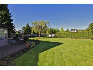 Photo 10: 5929 191A Street in Surrey: Cloverdale BC House for sale (Cloverdale)  : MLS®# F1312349