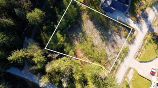 "Photo 7: 12905 246 Street in Maple Ridge: Websters Corners Land for sale in ""Allco Park"" : MLS®# R2576635"