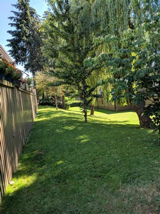 """Photo 4: 35 13795 102 Avenue in Surrey: Whalley Townhouse for sale in """"MEADOWS"""" (North Surrey)  : MLS®# R2280952"""