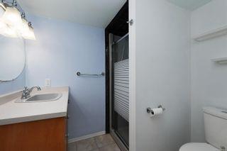 Photo 19: 210 Regina Ave in : SW Tillicum House for sale (Saanich West)  : MLS®# 867479