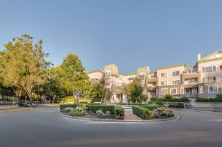 "Photo 19: 417 2970 PRINCESS Crescent in Coquitlam: Canyon Springs Condo for sale in ""Montclaire"" : MLS®# R2491023"