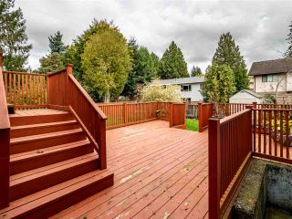 Photo 32: 34689 MARSHALL ROAD in Abbotsford: Abbotsford East House for sale : MLS®# R2511278