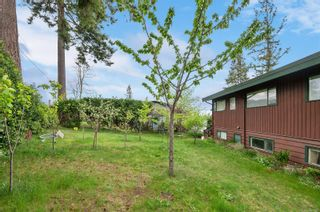 Photo 51: 201 McCarthy St in : CR Campbell River Central House for sale (Campbell River)  : MLS®# 875199