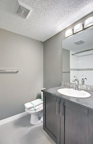 Photo 20: 4305 1317 27 Street SE in Calgary: Albert Park/Radisson Heights Apartment for sale : MLS®# A1107979
