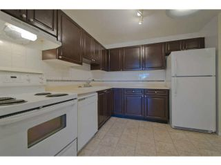 """Photo 2: 609 1310 CARIBOO Street in New Westminster: Uptown NW Condo for sale in """"River Valley"""" : MLS®# V1045912"""