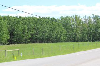 Photo 3: 25255 Bearspaw Place in Rural Rocky View County: Rural Rocky View MD Land for sale : MLS®# A1013795