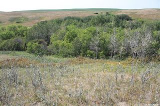 Photo 5: Lot 44 Clinton Street in Dundurn: Lot/Land for sale (Dundurn Rm No. 314)  : MLS®# SK865303