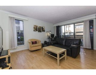 Photo 7: 19 365 GINGER Drive in New Westminster: Fraserview NW Townhouse for sale : MLS®# R2318406