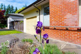 Photo 23: 368 Douglas St in : CV Comox (Town of) House for sale (Comox Valley)  : MLS®# 876193