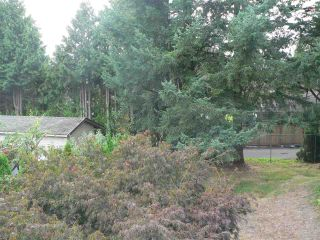 """Photo 29: 634 BERRY Street in Coquitlam: Central Coquitlam House for sale in """"CENTRAL COQUITLAM"""" : MLS®# R2578213"""
