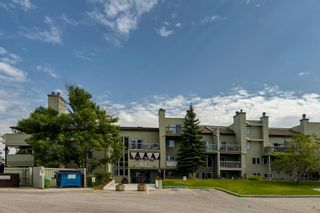 Photo 1: 2356 70 Glamis Drive SW in Calgary: Glamorgan Apartment for sale : MLS®# A1141752