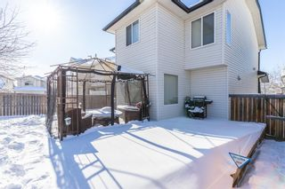 Photo 43: 85 Evansmeade Circle NW in Calgary: Evanston Detached for sale : MLS®# A1067552