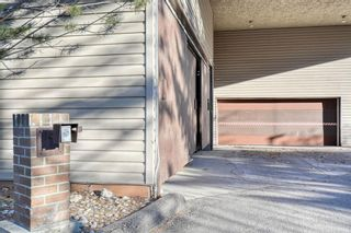 Photo 49: 201 2425 90 Avenue SW in Calgary: Palliser Apartment for sale : MLS®# A1052664