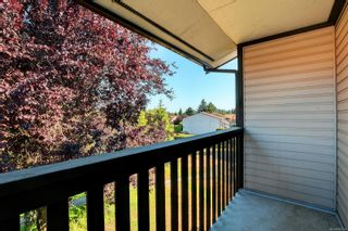 Photo 20: 49 1506 Admirals Rd in : VR Glentana Row/Townhouse for sale (View Royal)  : MLS®# 882374
