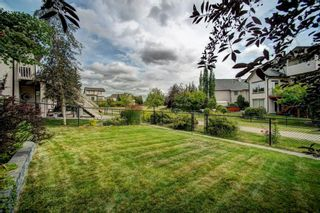 Photo 41: 49 CRANWELL Place SE in Calgary: Cranston Detached for sale : MLS®# C4267550