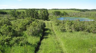 Photo 17: TWP RD 272 & RR 41 in Rural Rocky View County: Rural Rocky View MD Residential Land for sale : MLS®# A1127957