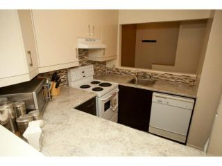 Photo 8: 220 Goulet Street in WINNIPEG: St Boniface Condominium for sale (South East Winnipeg)  : MLS®# 1215397