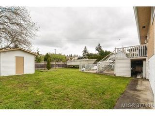 Photo 14: 1014 Londonderry Rd in VICTORIA: SE Lake Hill House for sale (Saanich East)  : MLS®# 757712