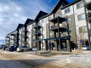 Photo 1: 417 508 ALBANY Way in Edmonton: Zone 27 Condo for sale : MLS®# E4229451