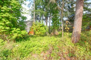Photo 16: 6891 Woodward Dr in : CS Brentwood Bay House for sale (Central Saanich)  : MLS®# 855831